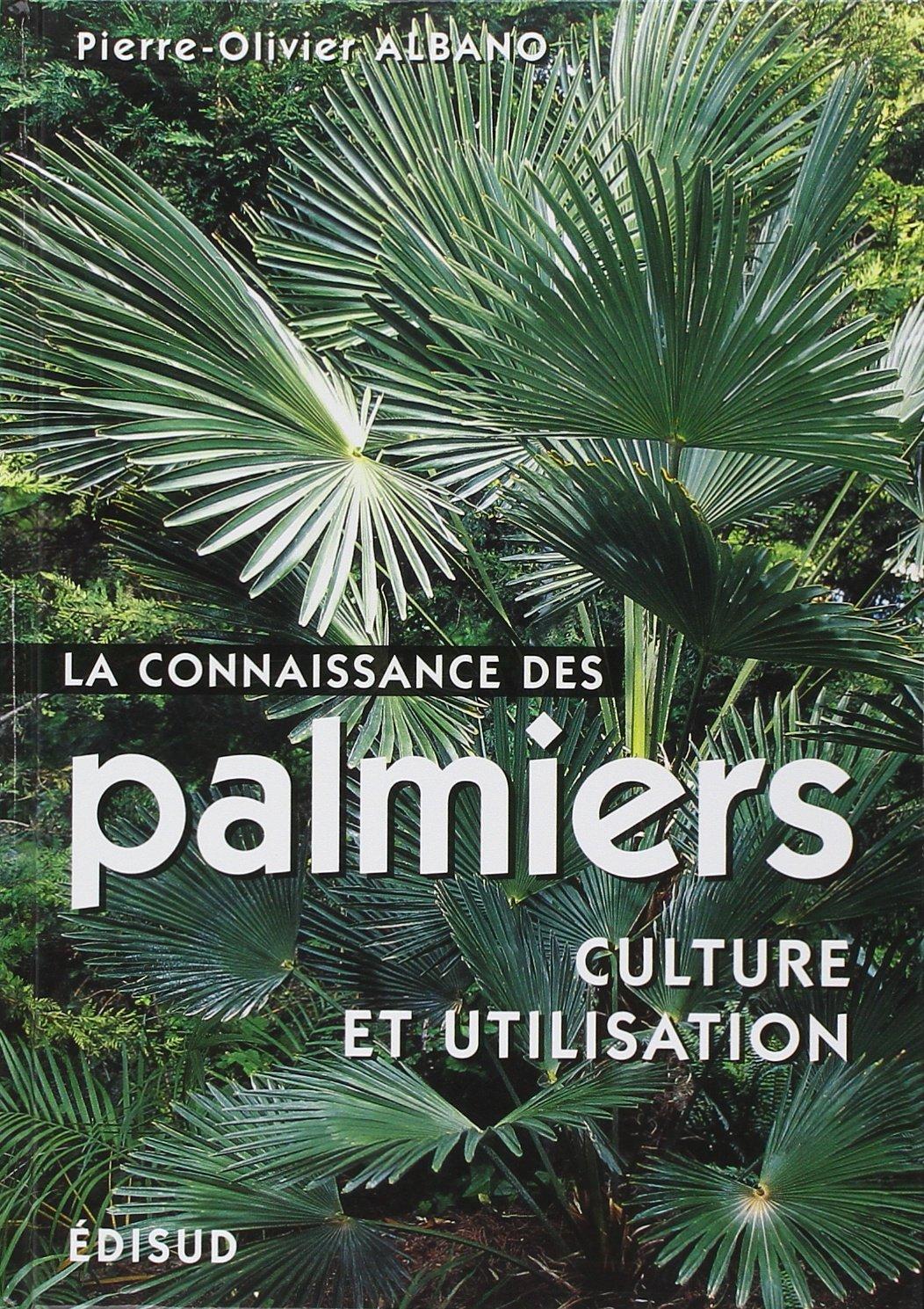 La connaissance des palmiers : culture et utilisation